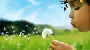 allergies and ayurveda
