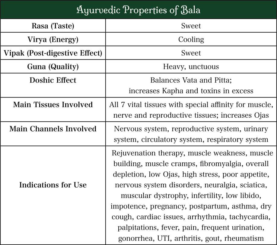Bala health benefits chart