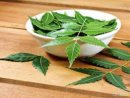 neem leaf benefits