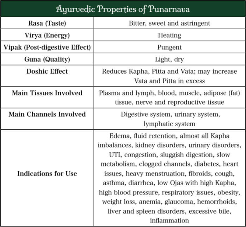 Ayurvedic Properties of Punarnava