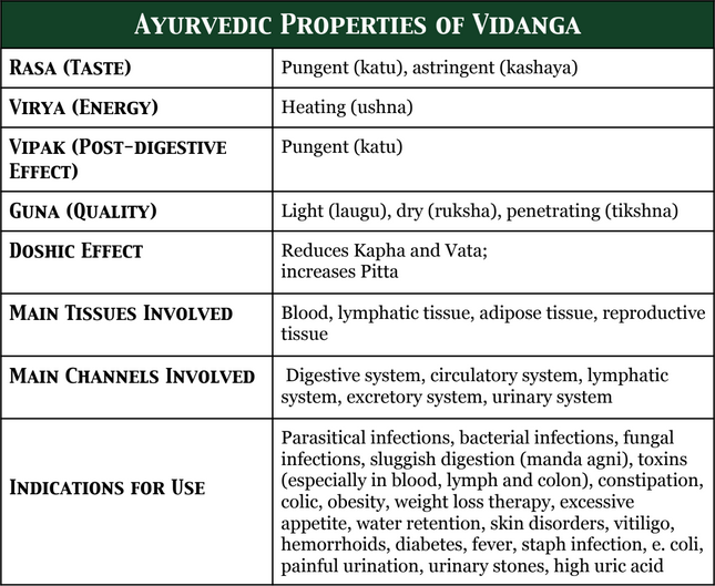 Vidanga: The Ultimate Herb for Killing Parasites and Much More